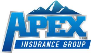 Apex Insurance Group of WI, LLC logo